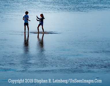 Walk on the Beach III Copyright 2019 Steve Leimberg UnSeenImages Com _DSF5567