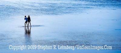 Walk on the Sand II Copyright 2019 Steve Leimberg UnSeenImages Com _DSF5556