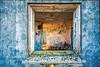 Peeking in House on Hill - Copyright 2017 Steve Leimberg - UnSeenImages Com _DSC6330-1