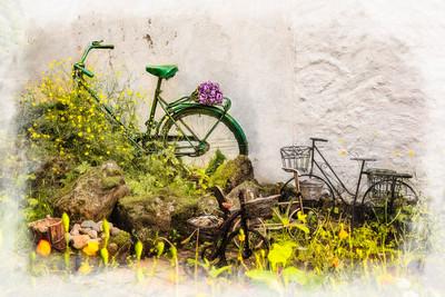 Bikes in Garden Copright 2021 Steve Leimberg UnSeenImages Com U0A9687 copy