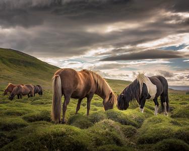 Búðardalur-Vesturland-Iceland