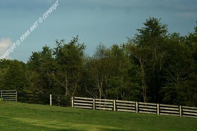 IMG_8789 Fence