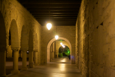 Stanford walkway at night