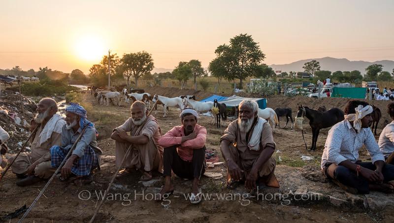 Horsemen at sunset, Pushkar Camel Fair, November 2019.
