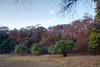 "Peaceful <br /> <br /> Shot at Ranthambhore national park <br /> <br />  <a href=""http://en.wikipedia.org/wiki/Ranthambhore_National_Park"">http://en.wikipedia.org/wiki/Ranthambhore_National_Park</a><br />  <a href=""http://www.tigerwatch.net/"">http://www.tigerwatch.net/</a>"