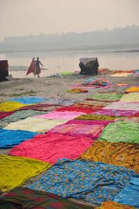 Washing saris
