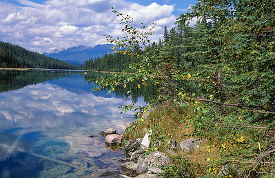 The Valley of five lakes.  Jasper, Canada.