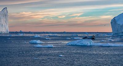 Icebergs, Disko Bay, Illulissat, Greenland