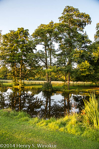Hartwell House Grounds