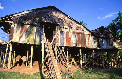 We arrived at the Village in early afternoon.  This long house is partitioned into a kitchen, community center and many small rooms for the individual families.  In years past, this tribe and neighboring tribes practiced head hunting.  At night the stair entrance was pulled in for protection.