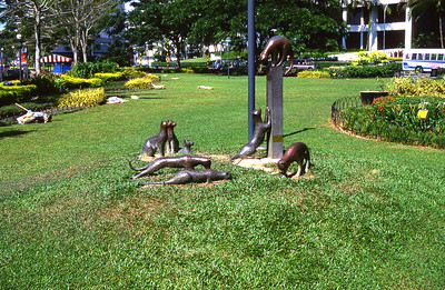 Cat statues at Kuching City, Sarawak, Malaysia.  Our purpose in Borneo was Underwater photography.  But as a side adventure,  decided to visit and stay with an indigenous tribe in the interior jungle called the Iban people.