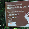 Our luggage safely tucked into our rooms, off we went to the Killarney National Park.