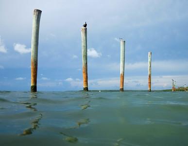 snorkeling at coral bay-4.jpg