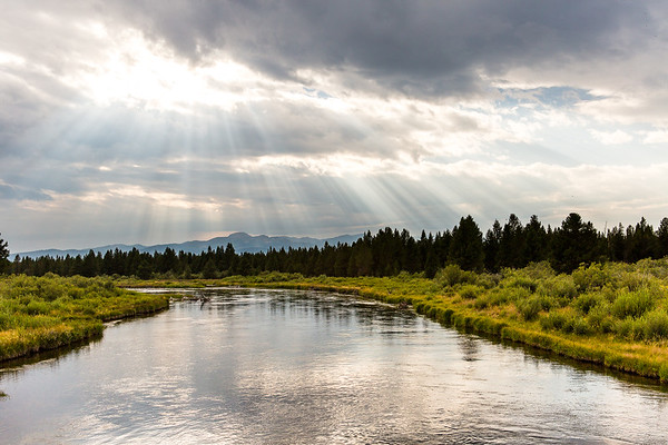 View from Madison River, west of West Yellowstone, Montana