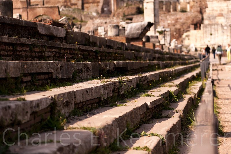 Steps of the Forum on the Ides of March, 2014...