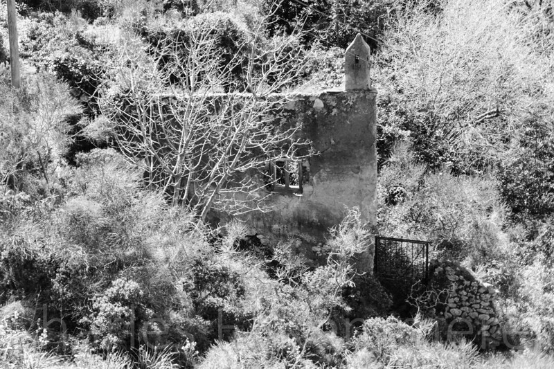 A ruin I spotted while riding to the top of Capri in a chair lift.