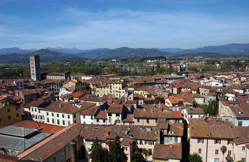 Lucca - View from Torre Guinigi