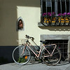 Lucca - Bike and Window