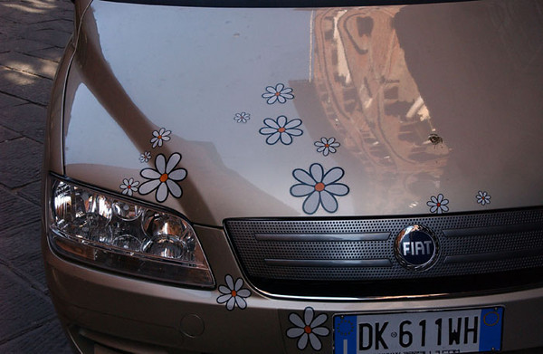 Lucca - Car with Daisy's