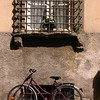 Lucca Bike under window