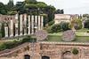 368-5976 Temple of Venus and Roma, Roman Forum, Roman Forum, Rome, September 10, 2013