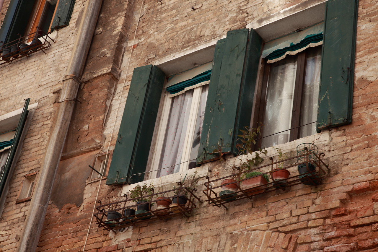 Window boxes, Venice, Italy