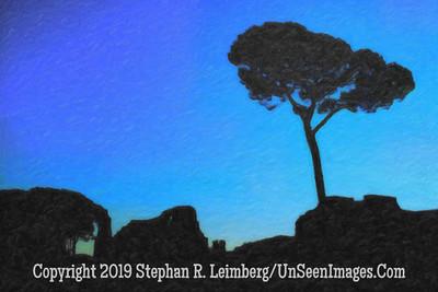 Tree at Twilight - Copyright 2015 Steve Leimberg - UnSeenImages Com