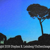 Tree at Twilight - Copyright 2015 Steve Leimberg - UnSeenImages Com