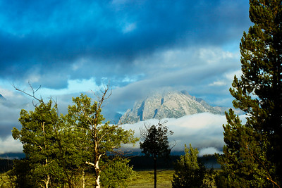 Mt. Moran from the lodge field.
