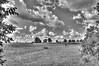 CAS_7912_3_4_tonemapped Gethsemani field