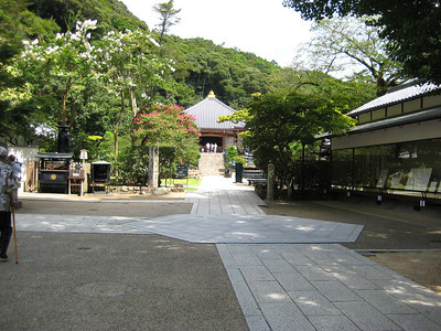 Seichoji temple - a beautifully spacious temple complex high on a hill and surrounded by tall trees.