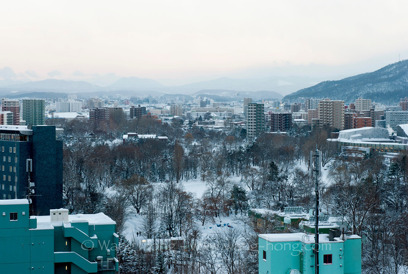 Nakajima Partk seen from the hotel window in Sapporo. 从酒店望向扎幌中岛公园。