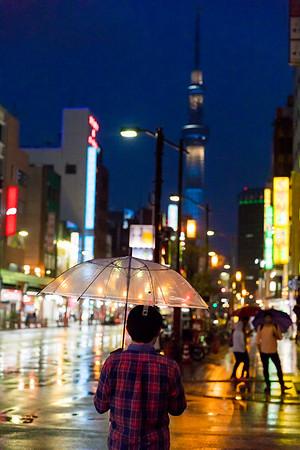 Rain with the Tokyo Skytree