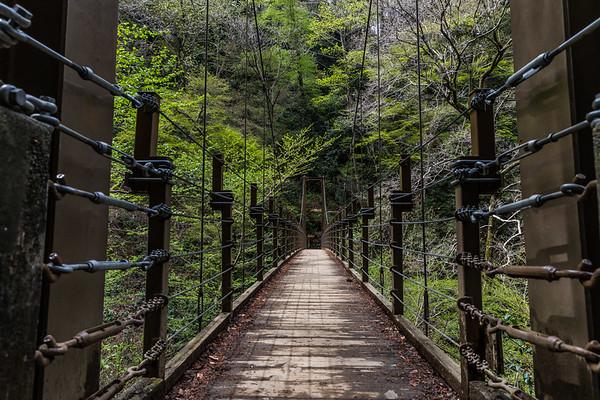 Bridge on Mount Takao Hike