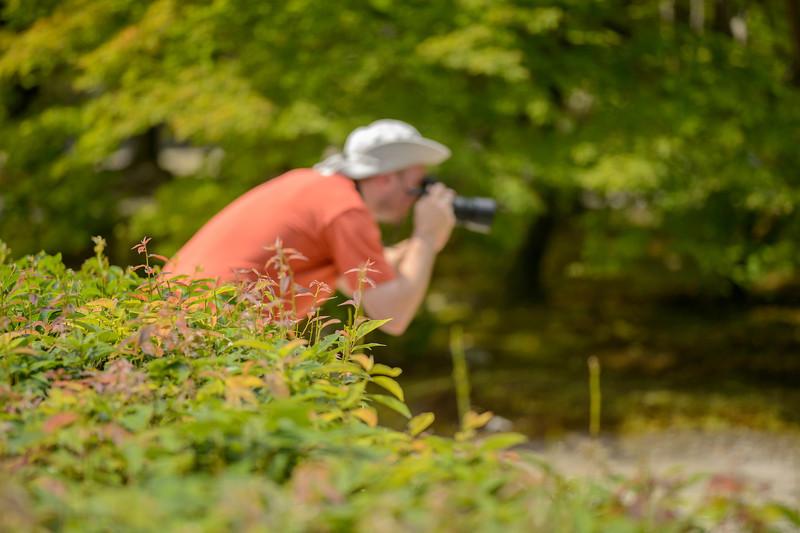 """Photo by Jeffrey Friedl ( <a href=""""http://www.regex.info/blog"""">http://www.regex.info/blog</a>)"""