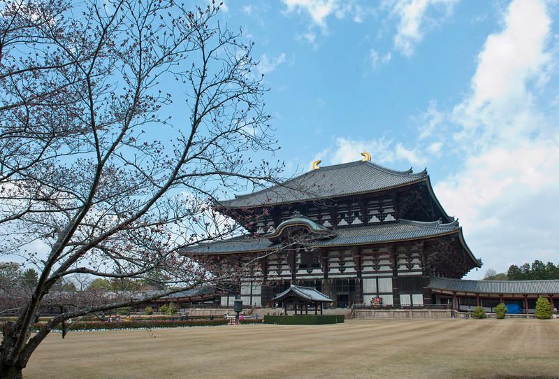 Todai-ji Temple in Nara 奈良东大寺,世界上现存最大的木结构建筑