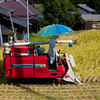 Today's rice harvesters, with built in sun protection....