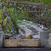 Stream waters are channeled to irrigate the rice paddies...