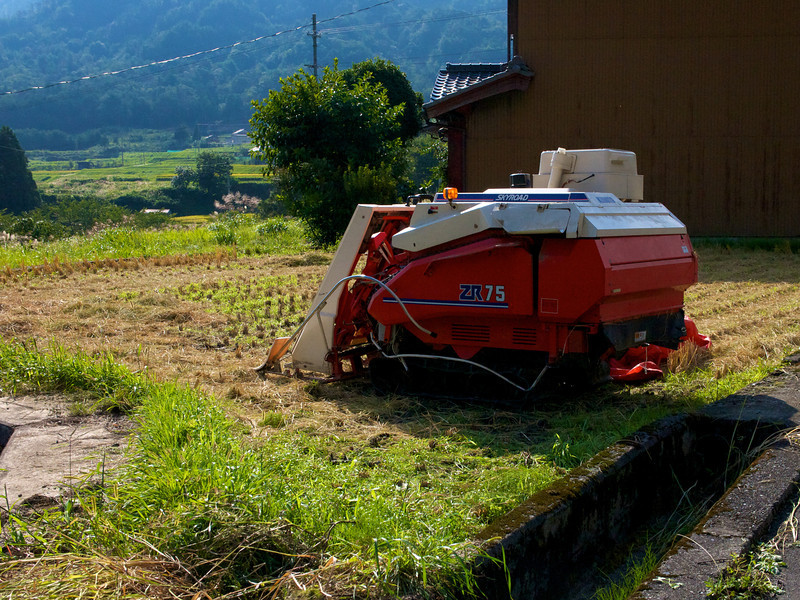 Today's rice harvesters