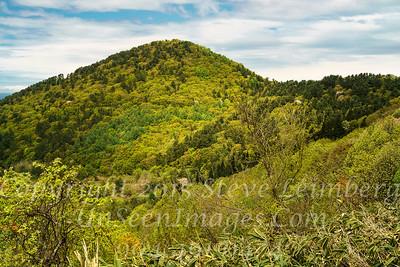 Hillside Near Ancient Village in Japan - Copyright 2018 Steve Leimberg UnSeenImages Com _DSC3742