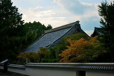 Nanzen-ji maple