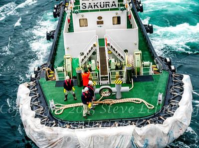 Pilot Boat Sakura - Copyright 2017 Steve Leimberg - UnSeenImages Com _DSF4695