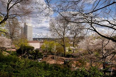 Japanese Garden - Kaiserslautern