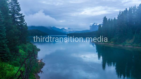 Maligne Lake and Deer