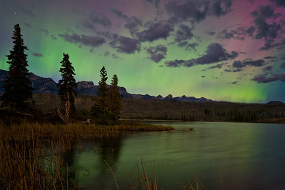 Aurora Borealis in the moonlight over Talbot Lake, Jasper National Park  (For more Aurora Borealis pictures, see my gallery under Nature/Landscapes).