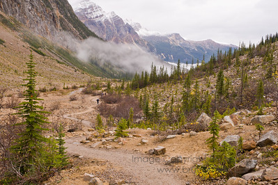View down the valley below Angel Glacier, Mount Edith Cavell, Jasper National Park