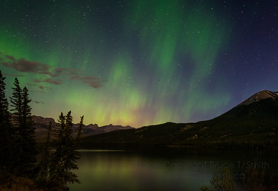 Aurora Borealis over Talbot Lake, Jasper National Park, Alberta