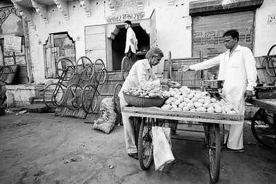 Working in Jodhpur, India