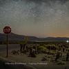 Stop!  Milky Way - Joshua Tree National Park