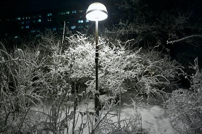 White glow of the winter night